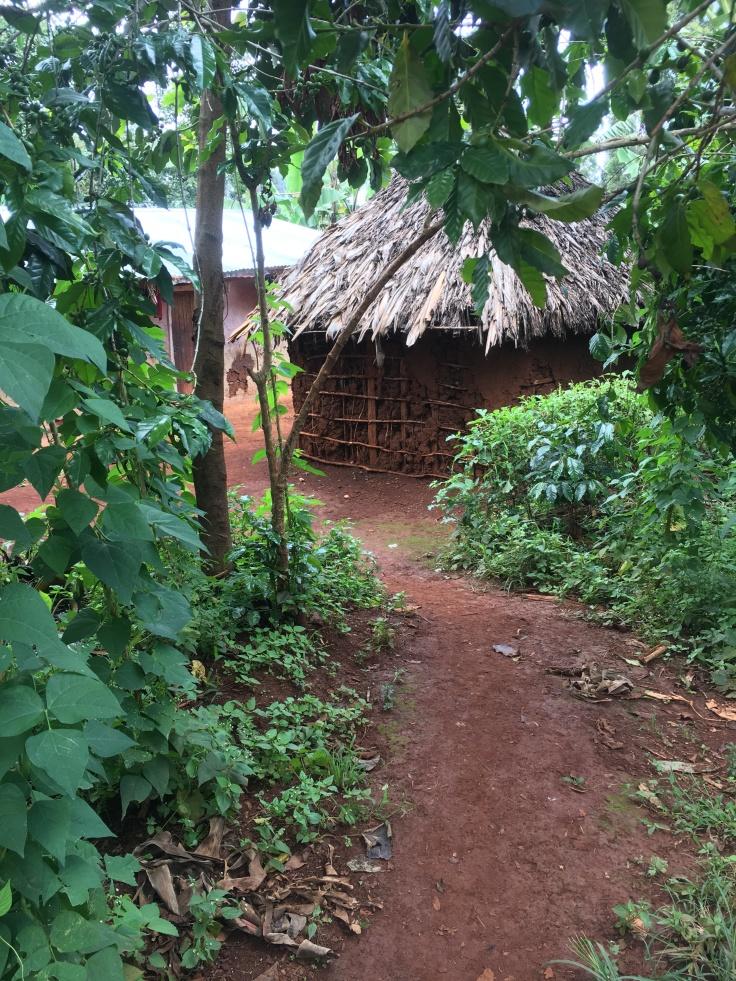 sipi village
